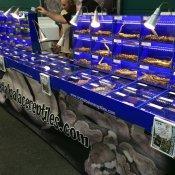 Terraristika Hamm - Crystal Palace Reptiles